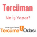 tercuman-ne-is-yapar